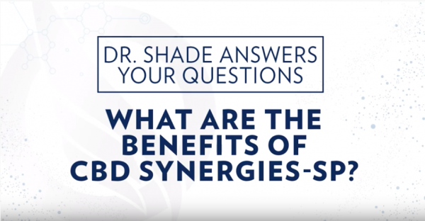 CBD Synergies-SP