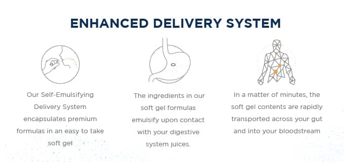 Self-Emulsifying Deliver System